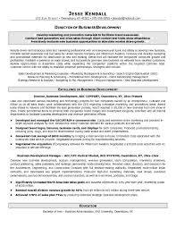 Sle Resume Business Development Director how to summarize paraphrase and quote from sources development