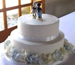 wedding cake tree nz buy wedding cake tree cornus controversa