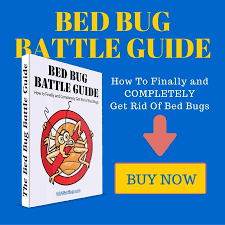 What Kills Bed Bugs And Their Eggs What Kills Bed Bugs And Their Eggs Kill All Bed Bugs