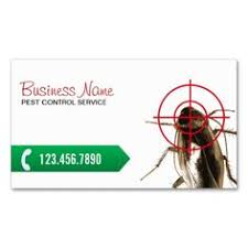 pest business card fly pest business cards and
