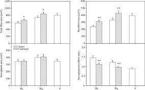 hormonal control of swimbladder sonic muscle dimorphism in the