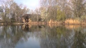Ich Suche Haus Zum Kaufen Fischteich Kaufen Youtube