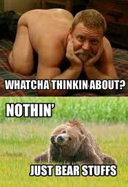 Gay Bear Meme - gay bears can you name them page 2