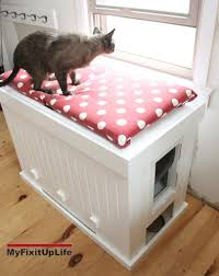 create a cat litter box that doubles as an adorable bench cats