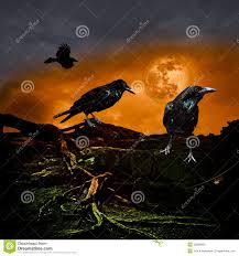 halloween design holiday party background full moon raven crow