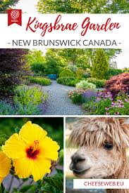 Best Flower Food Kingsbrae Garden Saint Andrews New Brunswick Canada