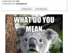 High Koala Meme - koala bear meme high
