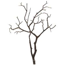 manzanita branches for sale manzanita branches for sale only 4 left at 60