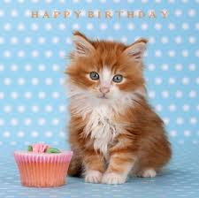 26 best birthday images on pinterest birthday cards birthday