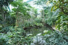 indoor gardens in paris urban retreats