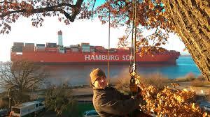 Finanzamt Bad Segeberg Impressum Baumprojekt Baumpflege Hamburg Und Norderstedt