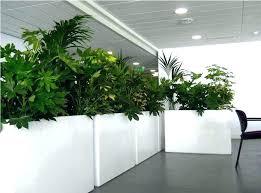 self watering indoor planters planter indoor self watering indoor herb garden planter