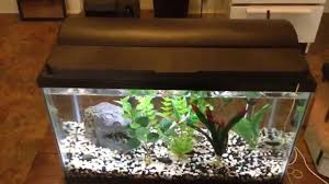 aqueon led aquarium light fixture 36 inch aqueon full hood led light youtube