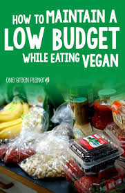 best 25 budget grocery lists ideas on pinterest budget healthy