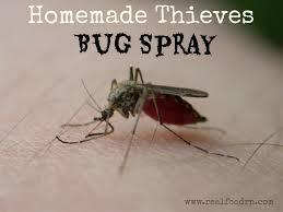 homemade nontoxic mosquito spray 1024x768 homemade thieves bug