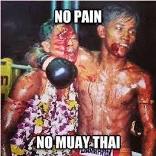 Muay Thai Memes - muay thai guy