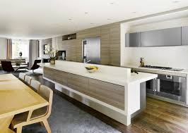 Full Wall Kitchen Cabinets Stylish One Wall On One Wall Kitchen 736x1104 Myonehouse Net