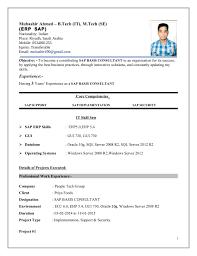 Sap Sd Support Consultant Resume Sap Fi Consultant Resume Format