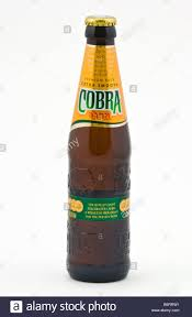cartoon beer bottle bottle of cobra indian lager beer brewed and bottled in the
