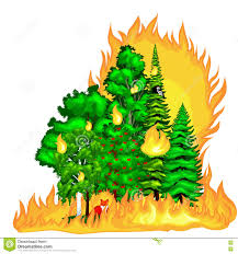 Wild Fire Danger by Wildfire Disaster With Burning Forest Trees Royalty Free Stock