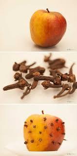 best 25 fruit flies ideas on pinterest getting rid of gnats