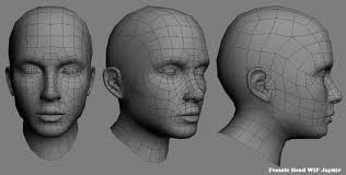 Female Body Reference For 3d Modelling Head Perspectives Reference Board Pinterest Perspective