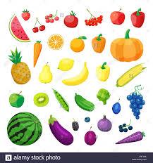 food vector set of vegetarian food vector vegetarian organic healthy food
