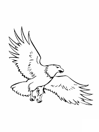 wonderful eagle coloring pages perfect colorin 7455 unknown