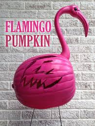 Halloween Usa Livonia Pink Flamingo Pumpkin Pink Flamingos Flamingo And Holidays