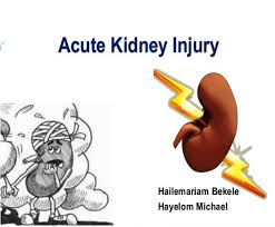 kidney infection causes symptoms and treatments chronic kidney