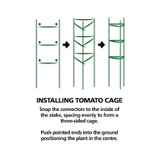 cages u0026 frames tomato cages