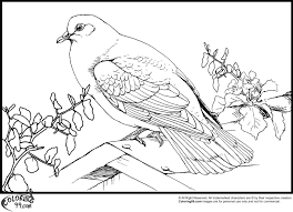 dove coloring pages minister coloring