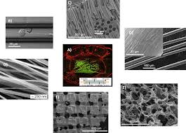 materials for central nervous system tissue engineering intechopen