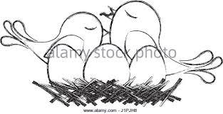 eggs in nest vector stock photos u0026 eggs in nest vector stock