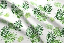 White Flag With Green Leaves Palm Leaf Green On White Greenery Tropical Palm Leaves Palm Tree