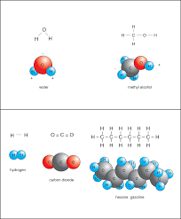 types of covalent bonds polar and nonpolar manoa hawaii edu