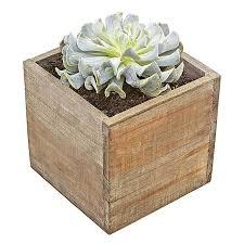 Rectangular Succulent Planter by Palavo Succulent Planter Box Luludi Living Art