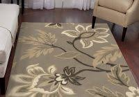 Contemporary Area Rugs Outlet Picture 12 Of 50 Area Rug Outlet Decor Adds Texture To