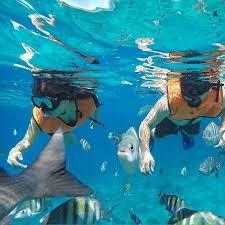 jeep snorkel underwater cozumel snorkel picture of jeep tour cozumel cozumel tripadvisor