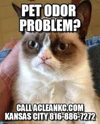 Carpet Cleaning Meme - carpet cleaning kansas city pet odor problem on memegen