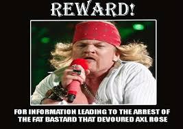 Axl Rose Meme - funny axl rose meme memes pinterest axl rose meme and humor