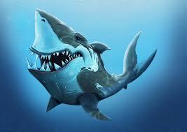 srđan milankov cartoons shark