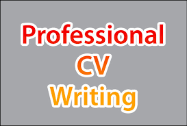 cv writting cv writing service from 20 open 7 days free review