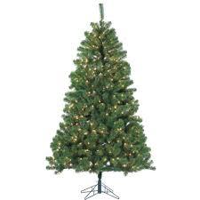 7 ft montana fir tree with clear lights at mills fleet farm