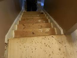 Laminate Flooring Installation On Stairs How To Put Laminate Flooring On Stairs