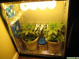 Superclosets by Small Grow Box I Like This System It Is An Awesome Piece Of