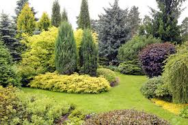 Beautiful Garden Images Beautiful Garden Landscape With Variety Of Conifers And Other