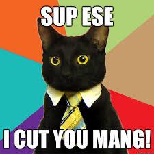 Sup Meme - sup ese i cut you mang cat meme cat planet cat planet