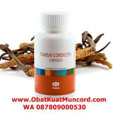 obat tradisional dari china yang bisa bikin kuat dan tahan lama