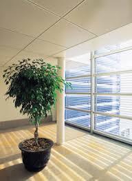 Distinctive Windows Designs Blinds U0026 Draperies Prince George Window Coverings Distinctive